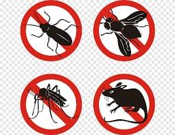 مكافحة حشرات باحد رفيدة